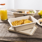 Compostable Ecofriendly Ecosource food Containers